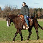 Иппотерапия: катание на лошадях для развития опорно-двигательного аппарата