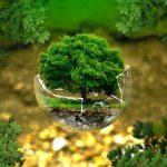 Как сохранить здоровье в условиях современной экологической ситуации