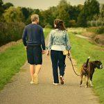 4 преимущества пеших прогулок для вашего здоровья